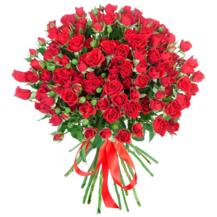 Розы Кустовые