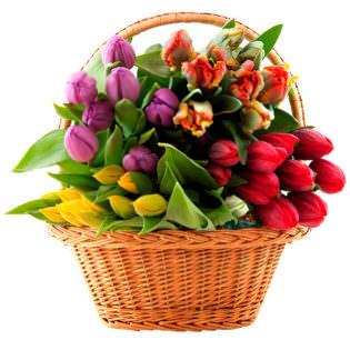 Цветы в корзинке «Микс тюльпанов»